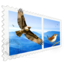 Mail Perspectives icon