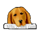 Logo for SmartDog