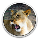 Logo for Lioness