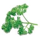 Logo for Parsley is Atomically Delicious