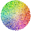 Logo for Color Oracle