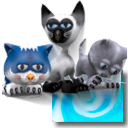 3D Desktop Kitty Cats Screen Saver