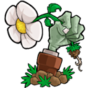 Logo for Plants vs Zombies