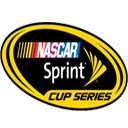 Logo for NASCAR Widget