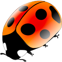 Logo for Coccinellida