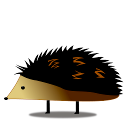 Logo for Project Hedgehog