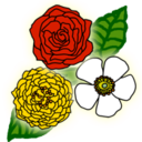 Logo for Rose Puzzle