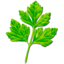 Logo for Parsley