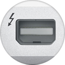 Apple Thunderbolt Firmware Update logo