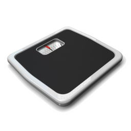 Logo for Weight Logger