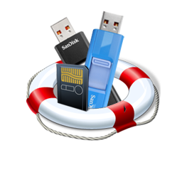 Logo for USB Flash Recovery