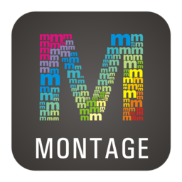 Logo for WidsMob Montage